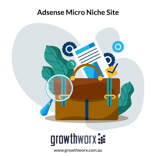 I will create SEO optimized adsense micro niche site 1