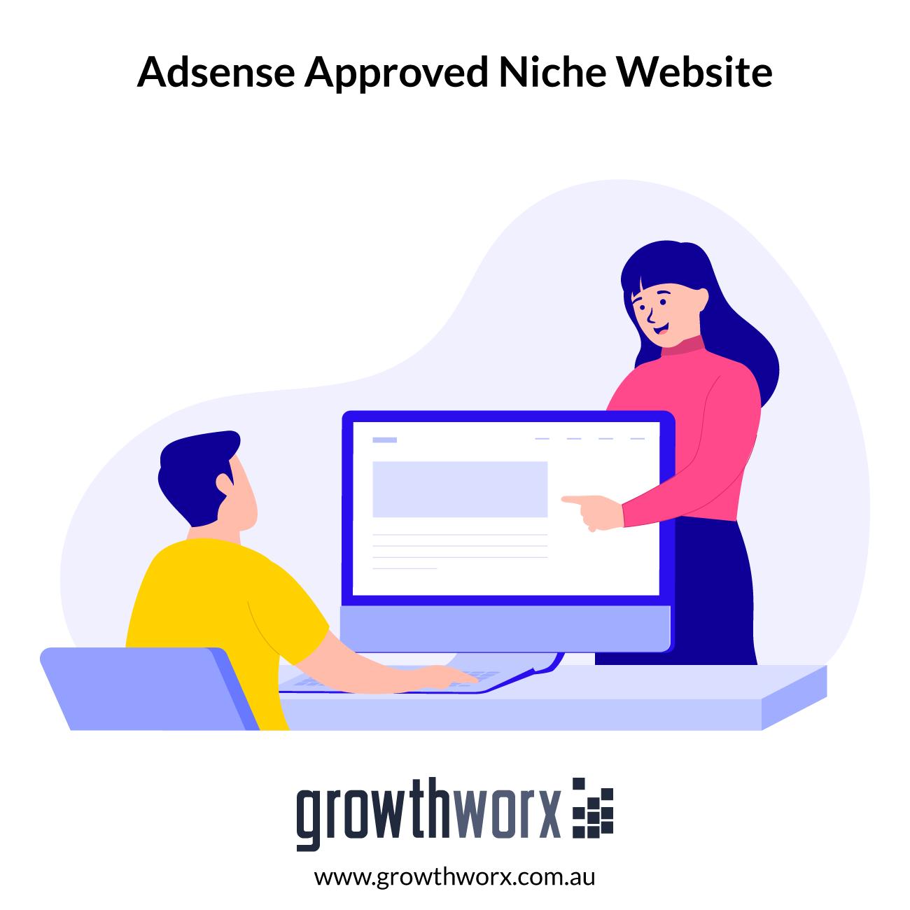 I will design you standard adsense approved niche website 1
