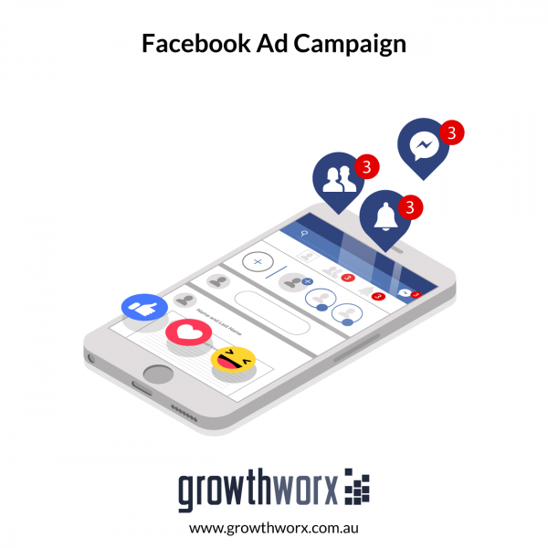 I will run a facebook ad campaign to grow page likes 1