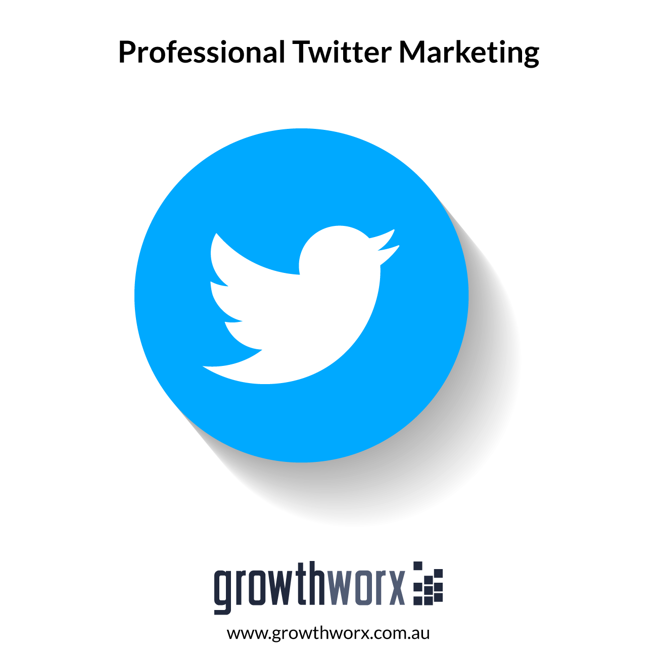 We will professionally do twitter marketing 1